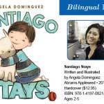 Santiago Stays-MainPhoto