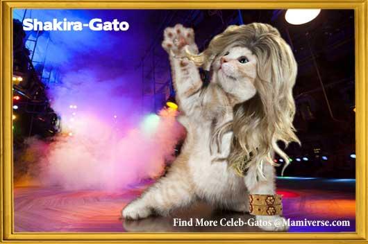 Shakira-Gato Giving The World Her All!-MainPhoto