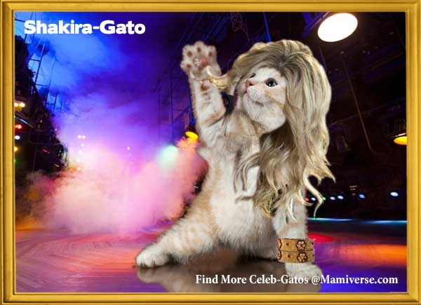 Shakira-Gato Giving The World Her All!-SliderPhoto