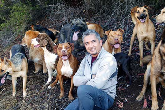 7 Quotes by César Millán to Help You Raise Your Dog & Your Kids!-MainPhoto