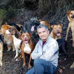 7 Quotes by César Millán to Help You Raise Your Dog & Your Kids!-SliderPhoto