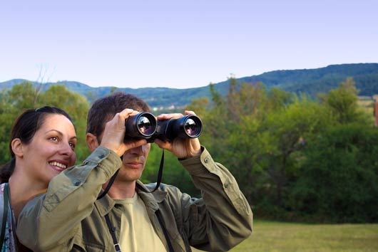 15 Reasons Why Bird-Watching Is Nature's Yoga-MainPhoto