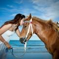 15 Reasons Why Women Love Horses-SliderPhoto