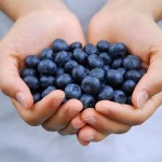 20-Facts-to-Know-About-Nature's-Super-Fruit-Blueberries!-MainPhoto