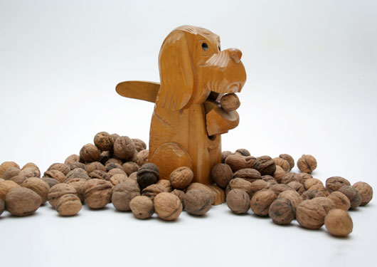 15-Foods-to-Keep-Away-from-your-Dog-photo2
