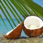 Coconut-Rage-20-Reasons-why-Coconuts-are-so-Hot-MainPhoto