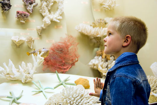 Cultivate-&-Activate-10-Ways-to-Help-Your-Kid-Find-a-Passion-photo8