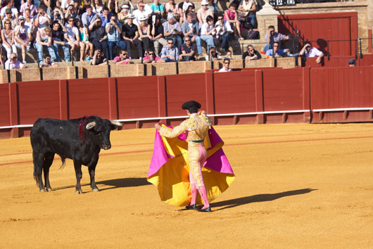 From-Toros-to-Tapas-20-Reasons-to-Fall-in-Love-with-Spain-photo2