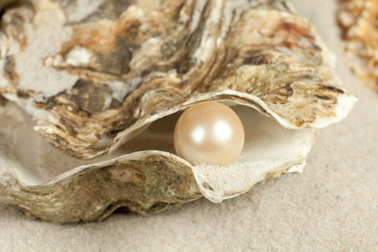 Oh-Shuck-You-15-Things-to-Know-About-Eating-OystersDKTR-photo15
