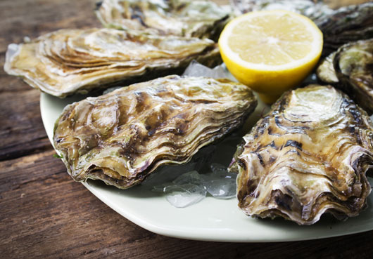 Oh-Shuck-You-15-Things-to-Know-About-Eating-OystersDKTR-photo2