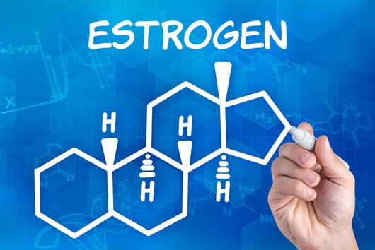 Power-Up-15-Foods-that-Naturally-Boost-Estrogen-MainPhoto