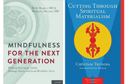 Biblio-Zen-6-of-the-Best-Meditation-Books-to-Get-You-in-the-Mood-photo5