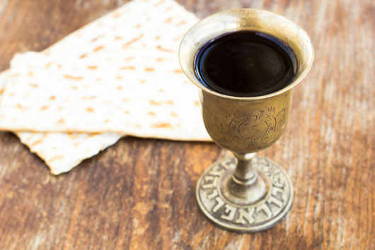 15-Reasons-Why-Everyone-Should-Experience-a-Passover-Seder-at-Least-Once-photo12