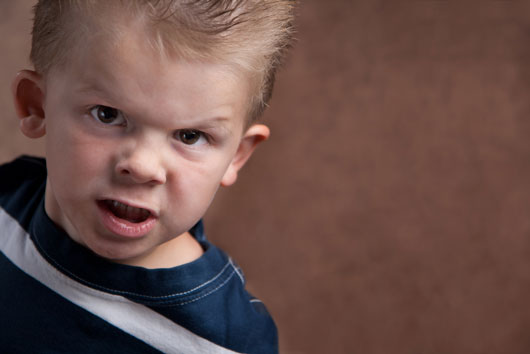No-Flex-Zone-How-to-Survive-Bossy-a-Toddler-Photo3