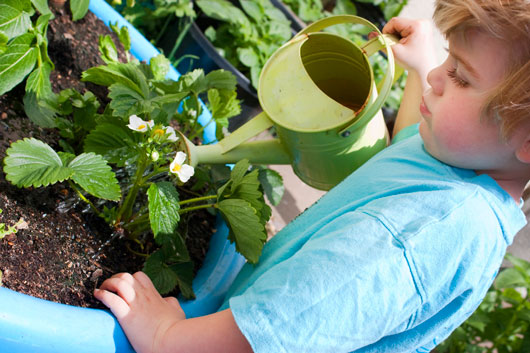 Family-Flora-Tips-on-Teaching-Kids-Gardening-Photo3