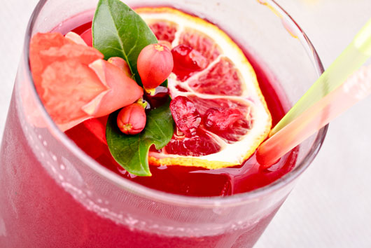 Summer-Elixir-8-Sangria-Recipe-Ideas-to-Sip-on-All-Season-Photo8