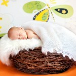 Baby-Room-Ideas-for-Babies-with-Parents-who-Don't-Play-by-the-Rules-MainPhoto