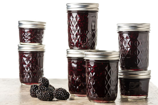 Berry-Ready-10-Blackberries-Recipes-to-Try-this-Fall-Photo6