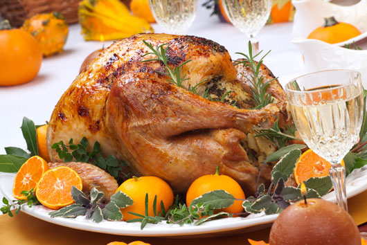 Bird-Watch-10-Turkey-Recipe-Ideas-You-Haven't-Tried-Photo7