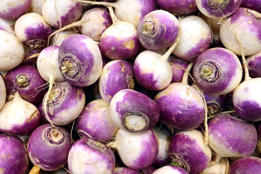 Turnt-on-Turnips-10-Turnip-Recipes-Recipes-to-Crank-Up-This-Winter-MainPhoto