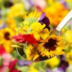15-Gorgeous-Deserts-that-Make-a-Case-for-Edible-Flowers-MainPhoto