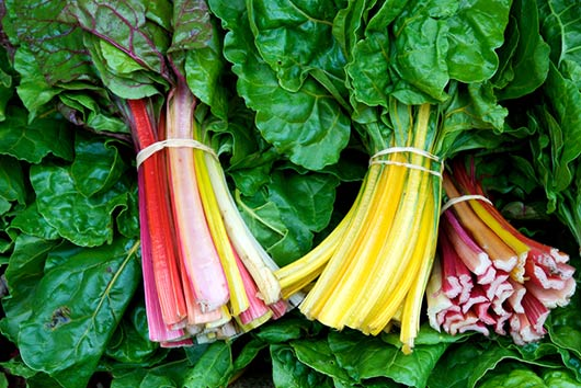 10-Rainbow-Chard-Recipe-Ideas-to-Brighten-Up-the-Table-MainPhoto