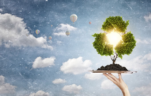 8-Meaningful-Earth-Day-Activities-Photo1