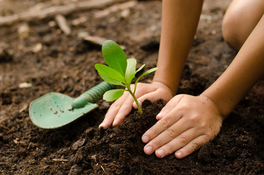 8-Meaningful-Earth-Day-Activities-Photo6