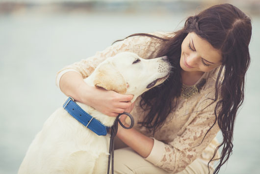 13-Reasons-to-Celebrate-Bring-Your-Dog-to-Work-Day-Photo0
